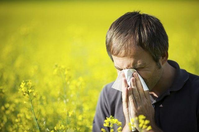 Берут ли в армию с аллергией: список аллергических заболеваний